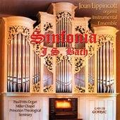 Bach: Sinfonia by Joan Lippincott