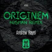 Originem (FYH 150 Anthem) (Husman Remix) de Andrew Rayel
