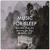 Music for Sleep: Relaxation, Study, Zen, Harmony, Spa, Yoga, Meditation, Chill de Various Artists