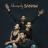 Universally SANAM by Sanam