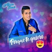 Porque Te Quiero by Agua Azul