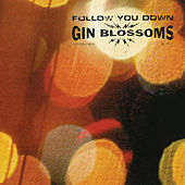 Follow You Down de Gin Blossoms