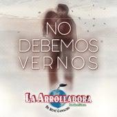 No Debemos Vernos by La Arrolladora Banda El Limon