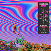 Silhouettes (Paul Woolford Remix) von Friendly Fires