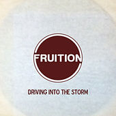 Driving into the Storm by Fruition