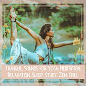 Tranquil Sounds for Yoga, Meditation, Relaxation, Sleep, Study, Zen, Chill de Various Artists