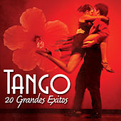 TANGO - 20 Grandes Exitos by Various Artists