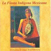 La flauta indígena Mexicana, Grabaciones de campo de Various Artists