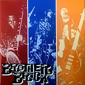 Stranded in the Nineties: Live, Demos, and Rarities by Brother Brick