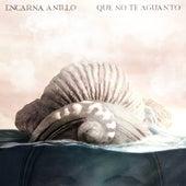 Que No Te Aguanto by Encarna Anillo
