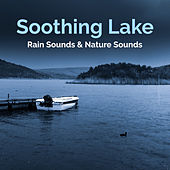 Soothing Lake by Rain Sounds