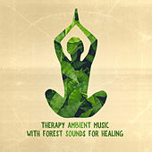 Therapy Ambient Music with Forest Sounds for Healing de Various Artists