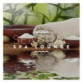 Sensual Spa Lounge, Vol. 13 de Various Artists