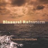 Binaural Rainstorm Recordings de Thunderstorm Sound Bank