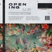 Opening Up de Cruisr