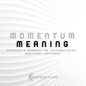 Momentum & Meaning by David Ashok Ramani