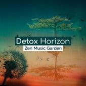 Detox Horizon de Zen Music Garden
