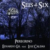 Peregrino de Eduardo Gil