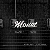 Ahora Que Tu No Estas by Monet
