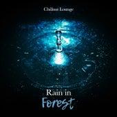 Rain in Forest von Various Artists