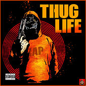 Thug Life - The Big Rap Collection von Various Artists