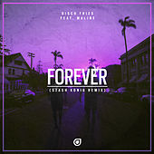 Forever (Stash Konig Remix) von Disco Fries