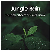 Jungle Rain de Thunderstorm Sound Bank