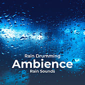 Rain Drumming Ambience by Rain Sounds