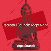 Peaceful Sounds: Yoga Noise by Yoga Music