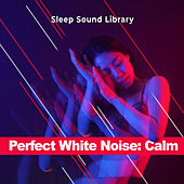 Perfect White Noise: Calm by Sleep Sound Library