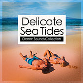 Delicate Sea Tides by Ocean Sounds Collection (1)