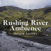 Rushing River Ambience by Nature Sounds (1)