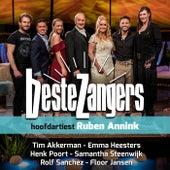 Beste Zangers Seizoen 12 (Aflevering 5 - Hoofdartiest Ruben Annink) di Various Artists