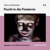 Flucht in die Finsternis von Arthur Schnitzler