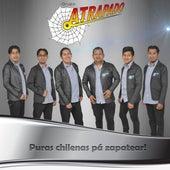 Puras Chilenas pá Zapatear de Grupo Atrapado