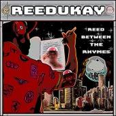 Reed Between the Rhymes by Reedukay