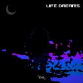 Life Dreams de Chamupa Unlimited