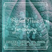 Perfect Music for Sleeping: Insomnia, Healing, Spa, Study, Yoga, Relax, Meditate de Various Artists