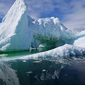 Cooler Than Antartica by Lil Ro