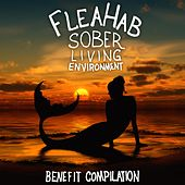 FleaHab Sober Living Environment Benefit Compilation by Various Artists