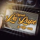 Oyendo La Lupe Y Algo Más de Various Artists