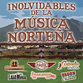Inolvidables De La Musica Norteña de Various Artists