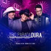 Pensa Num Trem Que Dói von Trio Parada Dura
