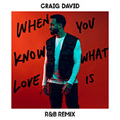 When You Know What Love Is (R&B Remix) de Craig David