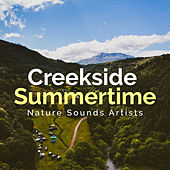 Creekside Summertime de Nature Sounds Artists