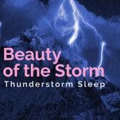 Beauty of the Storm de Thunderstorm Sleep