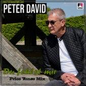 Du fehlst mir (Price Tunes Mix) von Peter David