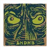 2hdhb by Dos Hermanos De Hale Bopp Band