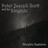 Morphic Euphoric de Peter Joseph Burtt