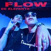Flow de Elefante by Sondela